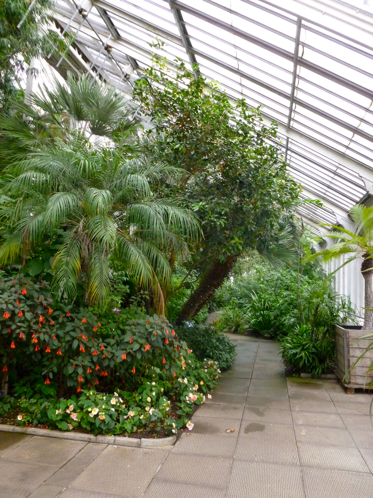 Kewgardens15