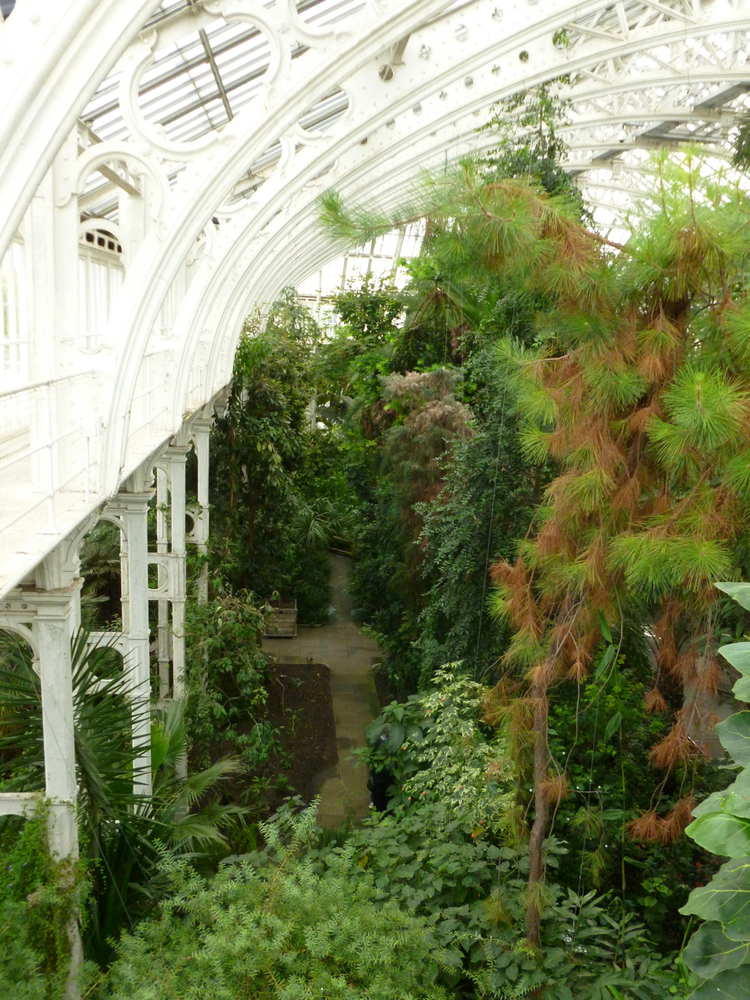Kewgardens27