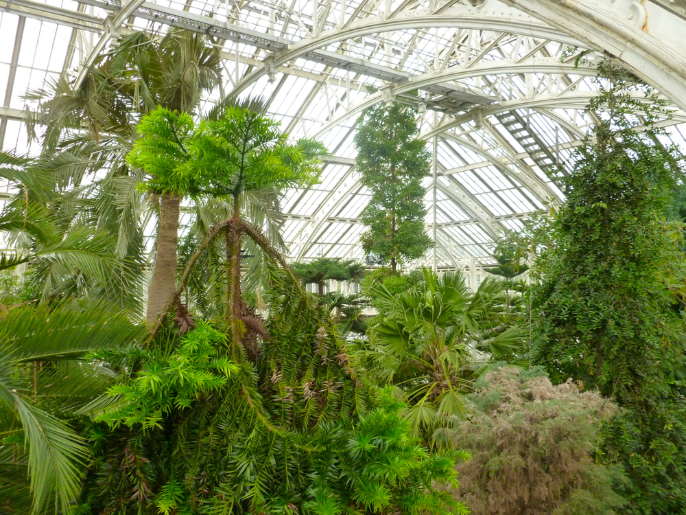 Kewgardens28